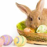イースターのマスコットウサギ「イースターバニー」語り継がれる3つの由来と意味!